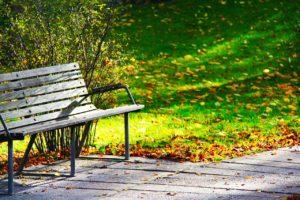 Listí