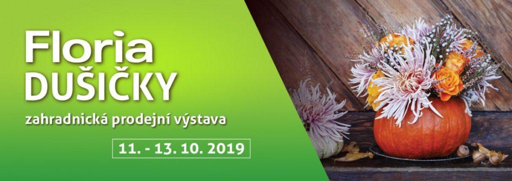 floria-podzim-2019-dusicky
